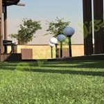 چمن مصنوعی سقف باغ اولنش