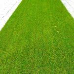 چمن مصنوعی حیاط - پروژه شرکت رویال