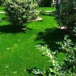 چمن مصنوعی حیاط زمانی