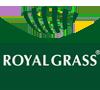 چمن مصنوعی برند royal grass