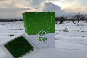 ارسال بسته های ویژه در جشنواره زمستانی چمنزار