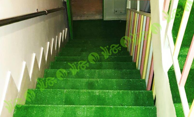 روی پله