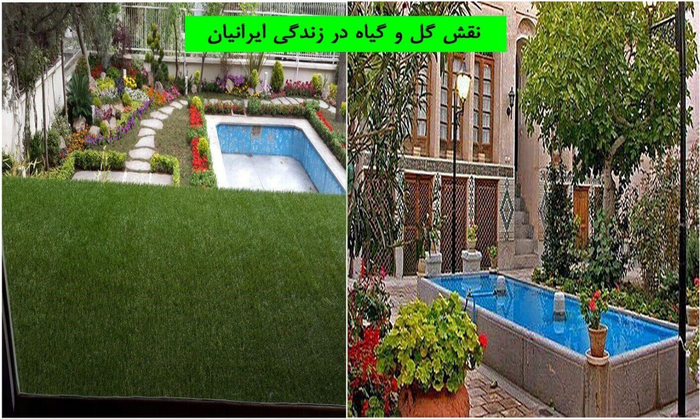 نقش گل و گیاه در زندگی ایرانیان