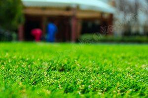 چمن مصنوعی باغ تالار سورینو