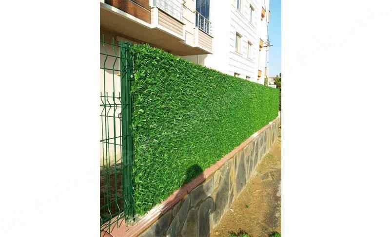 چمن مصنوعی دیوار