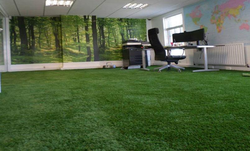چمن مصنوعی در محل کار