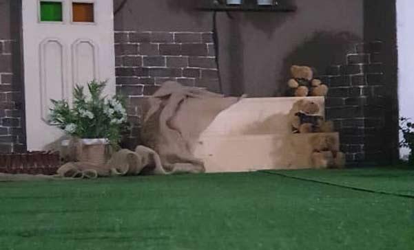 پهن کردن چمن مصنوعی در آتلیه عکاسی