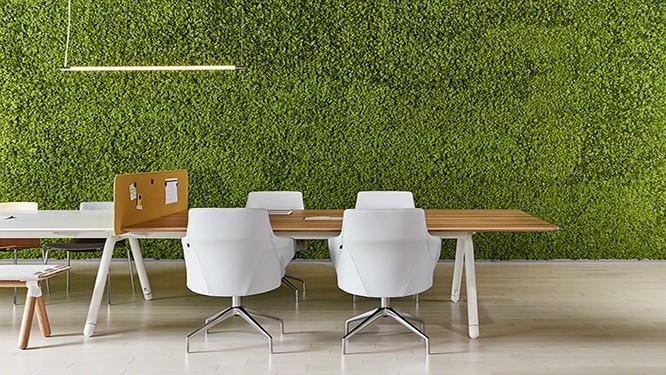 دیوار سبز در محیط کاری